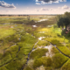 Best of Africas Water Private Safari - Duba Plains