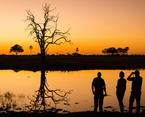 Linkwaha Wildlife - Sunset - Private Guides