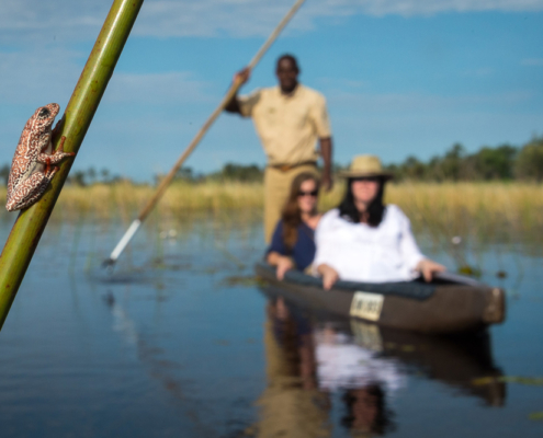 Little Vumbura - Boat Ride - Private Guides - Wild Again