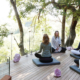 Londolozi Healing House - Private Guides - Wild Again