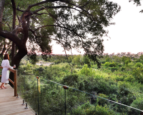 Londolozi Healing House - Wild Again - Private Guides