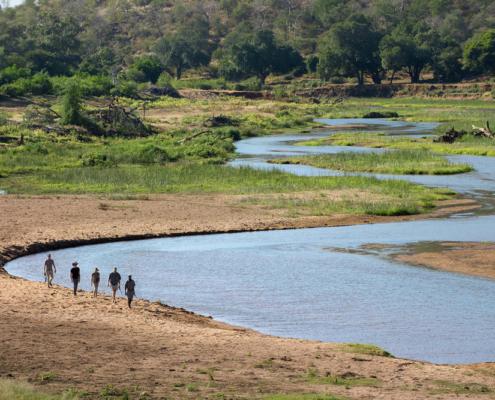 Pafuri - River - Private Guides - Wild Again