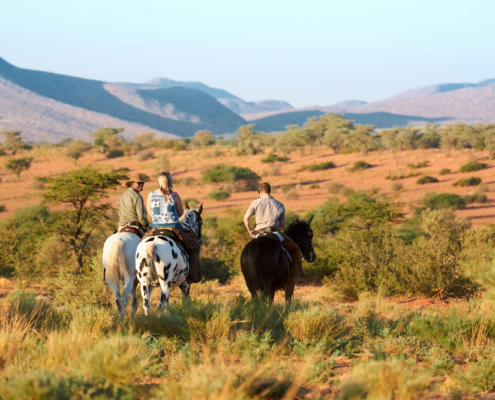 Safari Horse Ride - Private Guides - Wild Again_