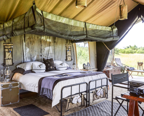 Serengeti Wildlife House - Private Guides - Wild Again