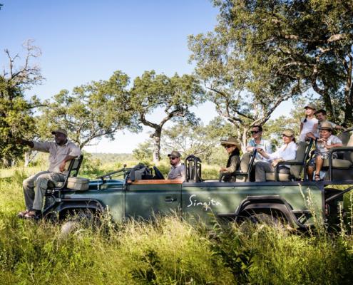 Wildlife Safari - Private Guides - Wild Again