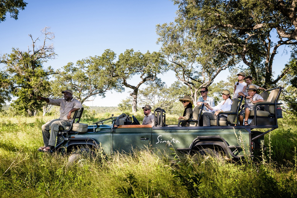 Wildlife Safari - Private Guides - Wild Again, Singita, summer safari