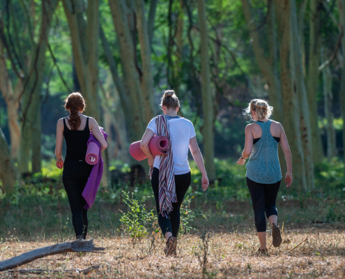 Wilderness Retreat Yoga Retreat Safari Wild Again Retreats Group 1