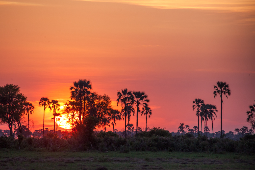 Summer Safari Botswana and Zambia. Sunset Chitabe