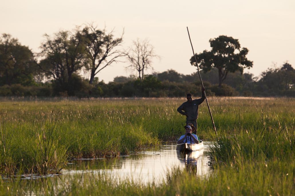 Summer Safari Botswana and Zambia. Makoro Khwai