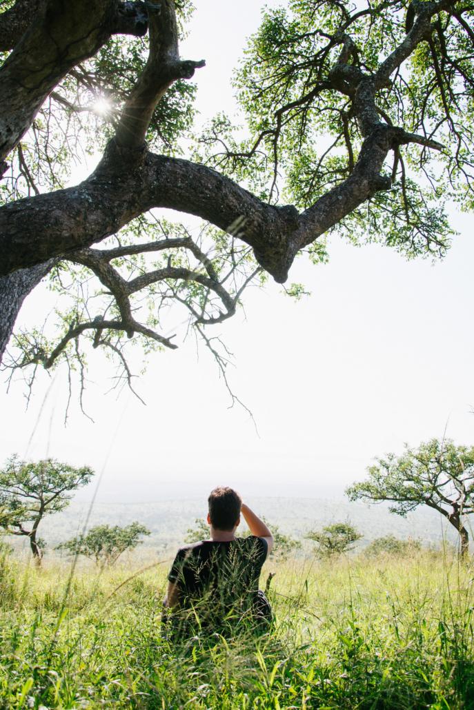 Wild Again Silence Safari Retreat Meditation Tree